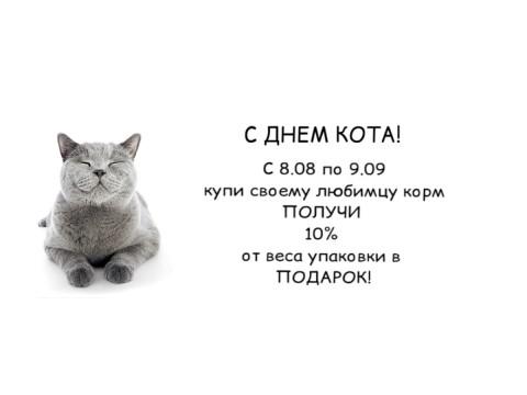 С Днем кота!