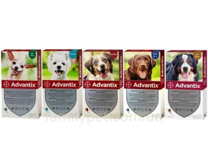 Bayer Advantix Капли для собак от блох и клещей