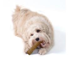 Petstages Dogwood Stick Ветка игрушка для собак