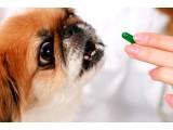 Средства от глистов для собак (4)